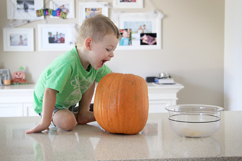 28 October 2014- Pumpkin Carvin'002