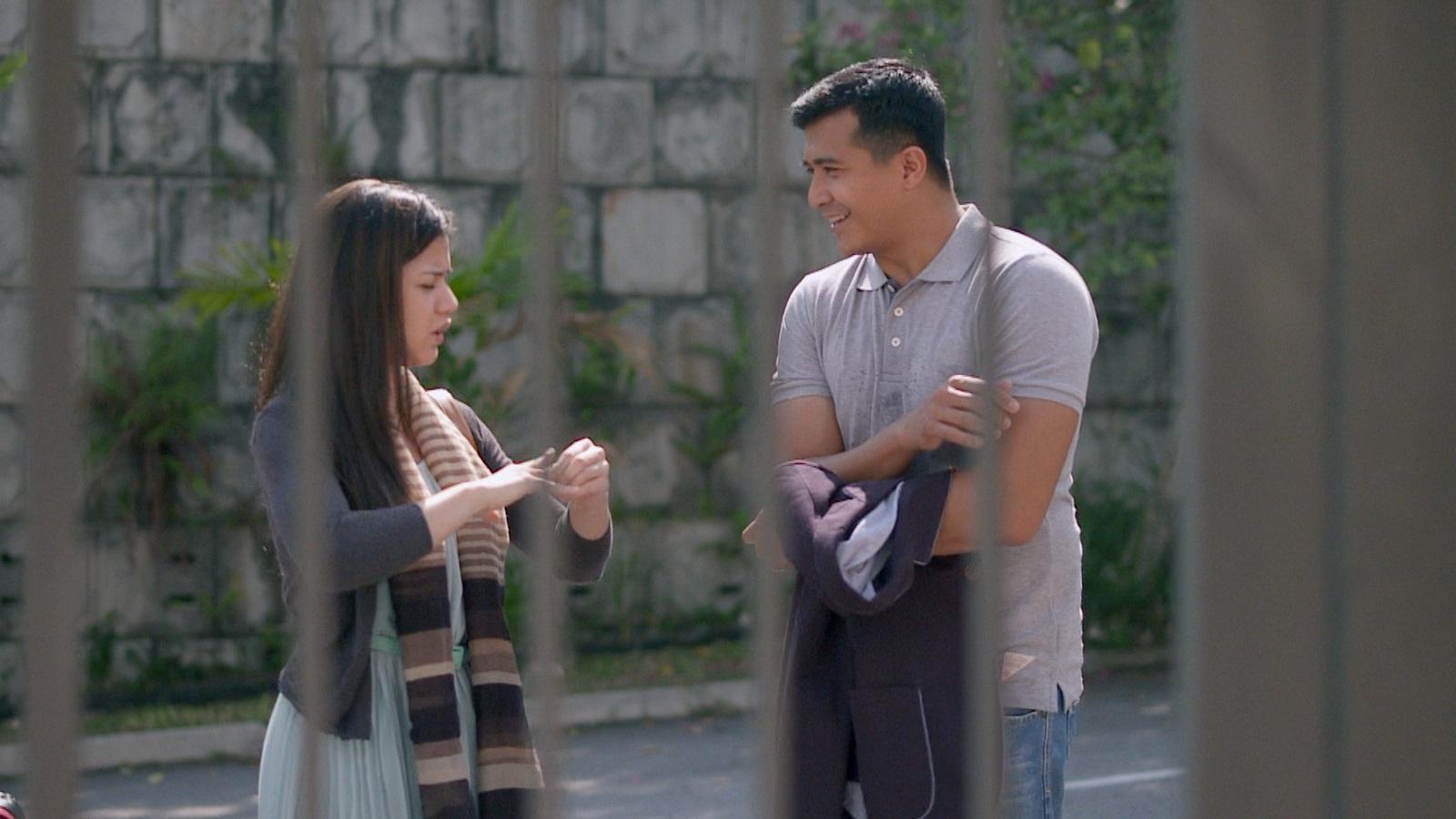 Sinopsis Suamiku Encik Perfect 10 Lakonan Lisa Surihani