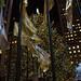 Rockefeller Center Tree - II
