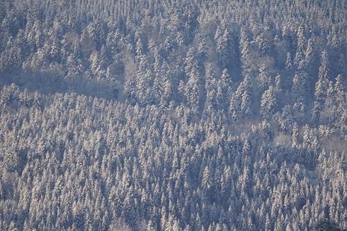Sneeuw in Solbach