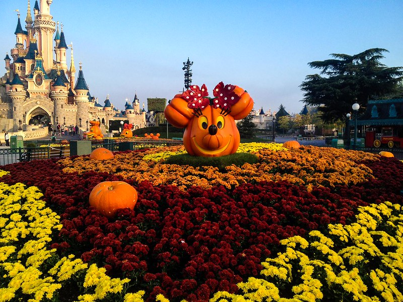 Minnie Mouse Pumpkin During Halloween at Disneyland Paris