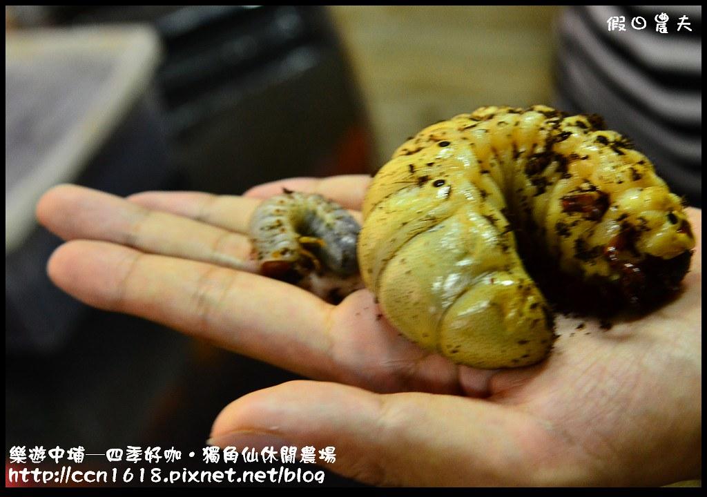 樂遊中埔─四季好咖‧獨角仙休閒農場DSC_3885