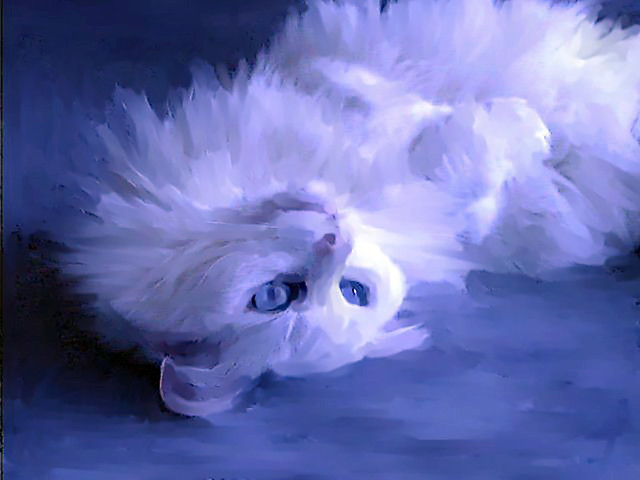 White Cat Blue 2015