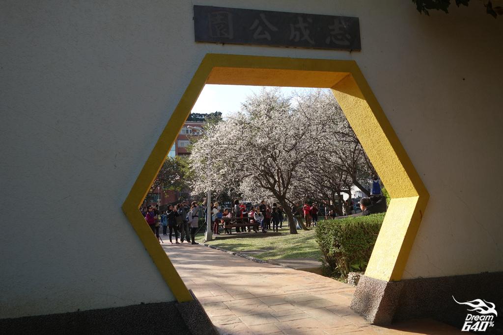 台北賞梅-志成公園+士林官邸41