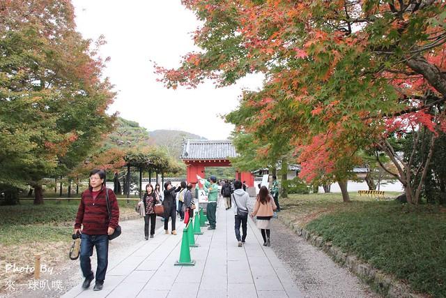 京都旅遊景點-宇治083