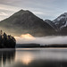 Luminous fog