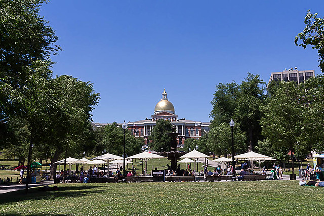 Images of Boston Common, June 21, 2016