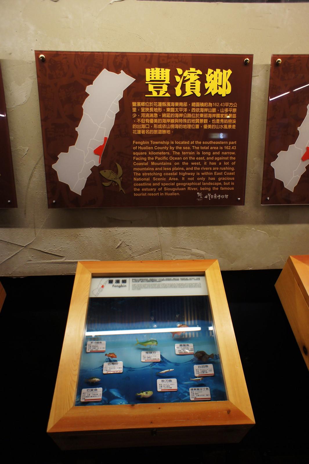 七星潭柴魚博物館 (18)