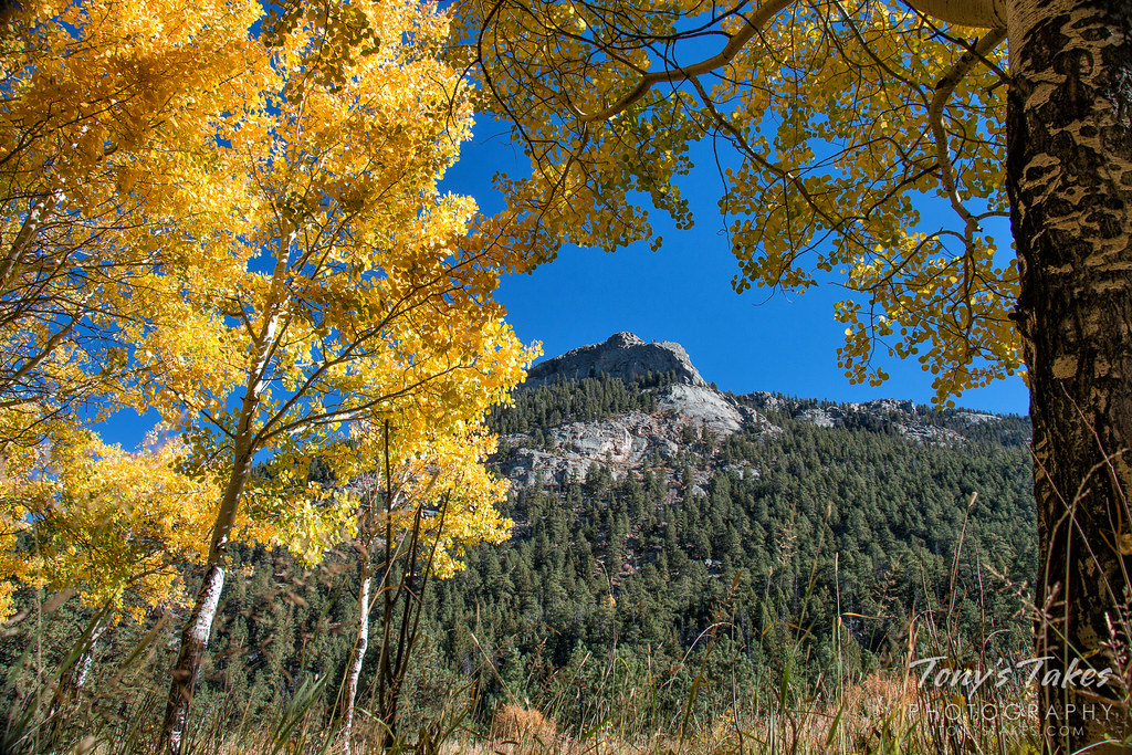 Rocky Mountain National Park is a prime spot for viewing the fall foliage. (Tony's Takes)