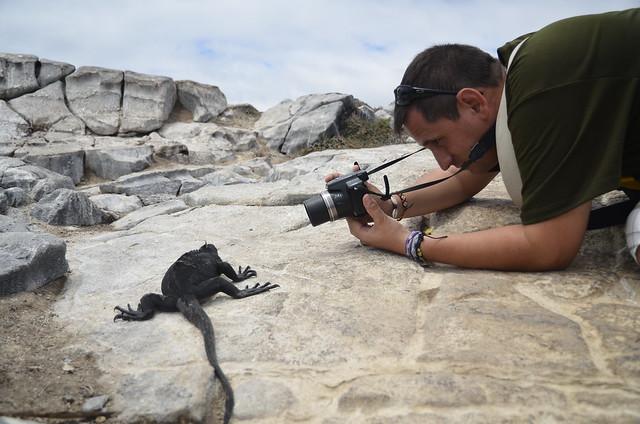 Sele fotografiando una iguana marina de Galápagos en isla Plaza Sur
