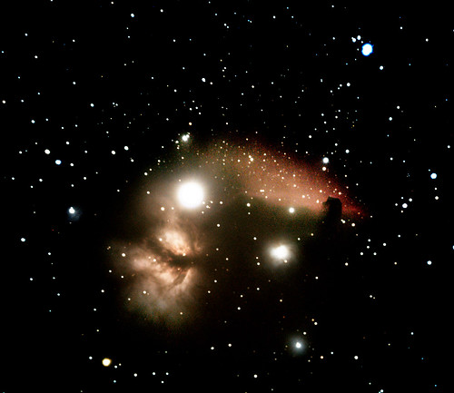 horsehead-flame-100mn-8fms-1600iso crop