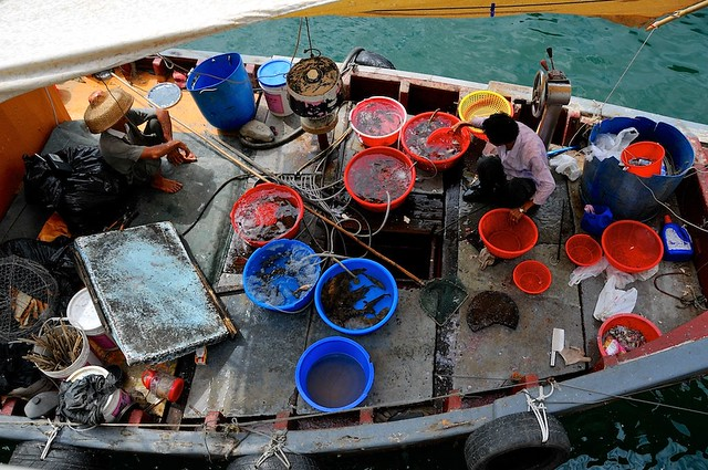 Fishermen displaying their catch