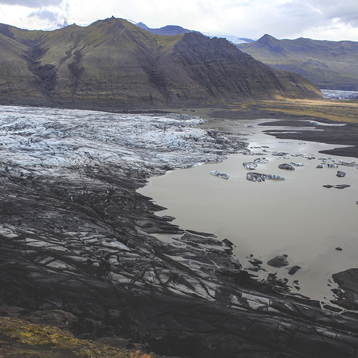 Iceland_Spiegeleule_August2014 079