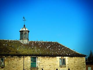 Old Custom House, Peterborough