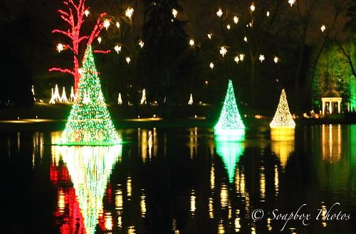 """""""A Longwood Christmas"""""""