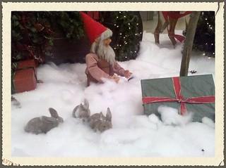 Snow + bunnies = Snowbunnies