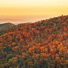I'm missing the mountain air today. Hopefully @carl and I will take another day trip to #ShenandoahNationalPark this weekend and get in the last glimpses of #autumncolors - it's just breathtaking there, square photos don't do it justice! #chasingautumn #c