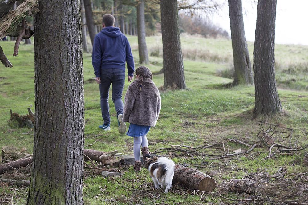 walk-woods-lyme-park