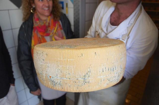 pecorino-pienza-tuscany-italy-cr-brian-dore