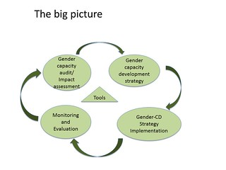 Integrating gender into the dairy value chain in Tanzania