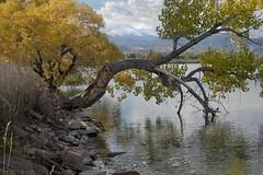 Parks, McIntosh Lake