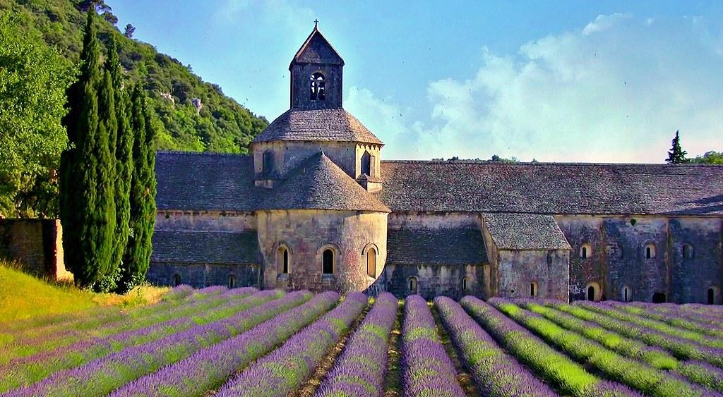 FRANCE - Provence, Abtei de Sénanque,hinter Lavendelfeld ,  12281/4413
