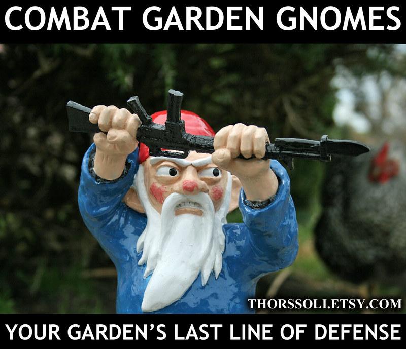 Combat Gnome MEME4