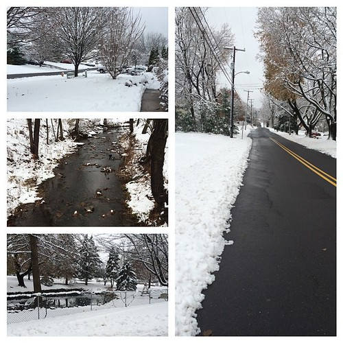 Scenes from this morning's snowy run. #nofilter #PAispretty #winterwonderland