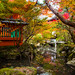 momiji '14 - autumn foliage #10 (Bisyamon-dou temple, Kyoto) by Marser