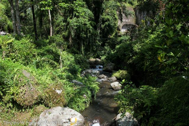Indonesia - Bali - Candi Gunung Kawi - Pakerisan River