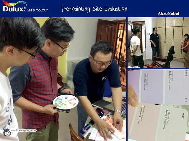 3DULUX Prepainting site evaluation