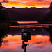Small photo of Catching Sunrise on a Cold morning - Urewera