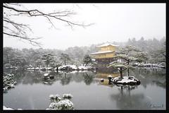 日本京都-金閣寺-雪.32