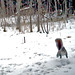 Up Up And Away (Trail Cam) by Woody Woodsman
