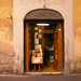 Antique Book Shop - Romanesque