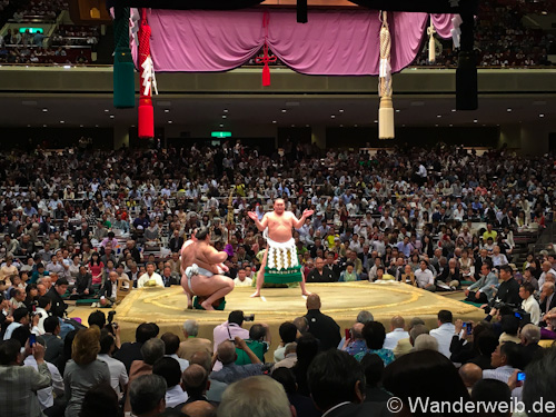 sumo (48 von 53)