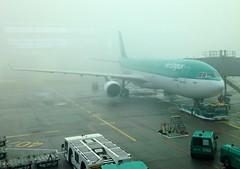 Are Lingus Airbus A300-200, Aoife. At a foggy Dublin Airport.