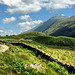 Clear Day on the West Highland Way - Scotland (2448 x 2448) [OC]