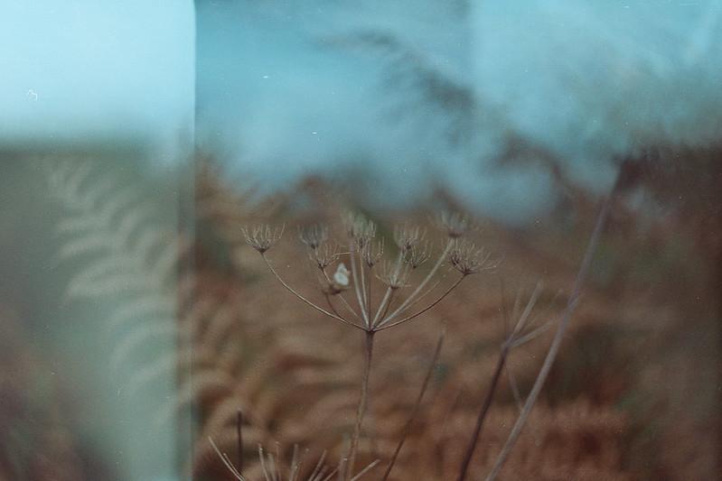 Photo10_6A