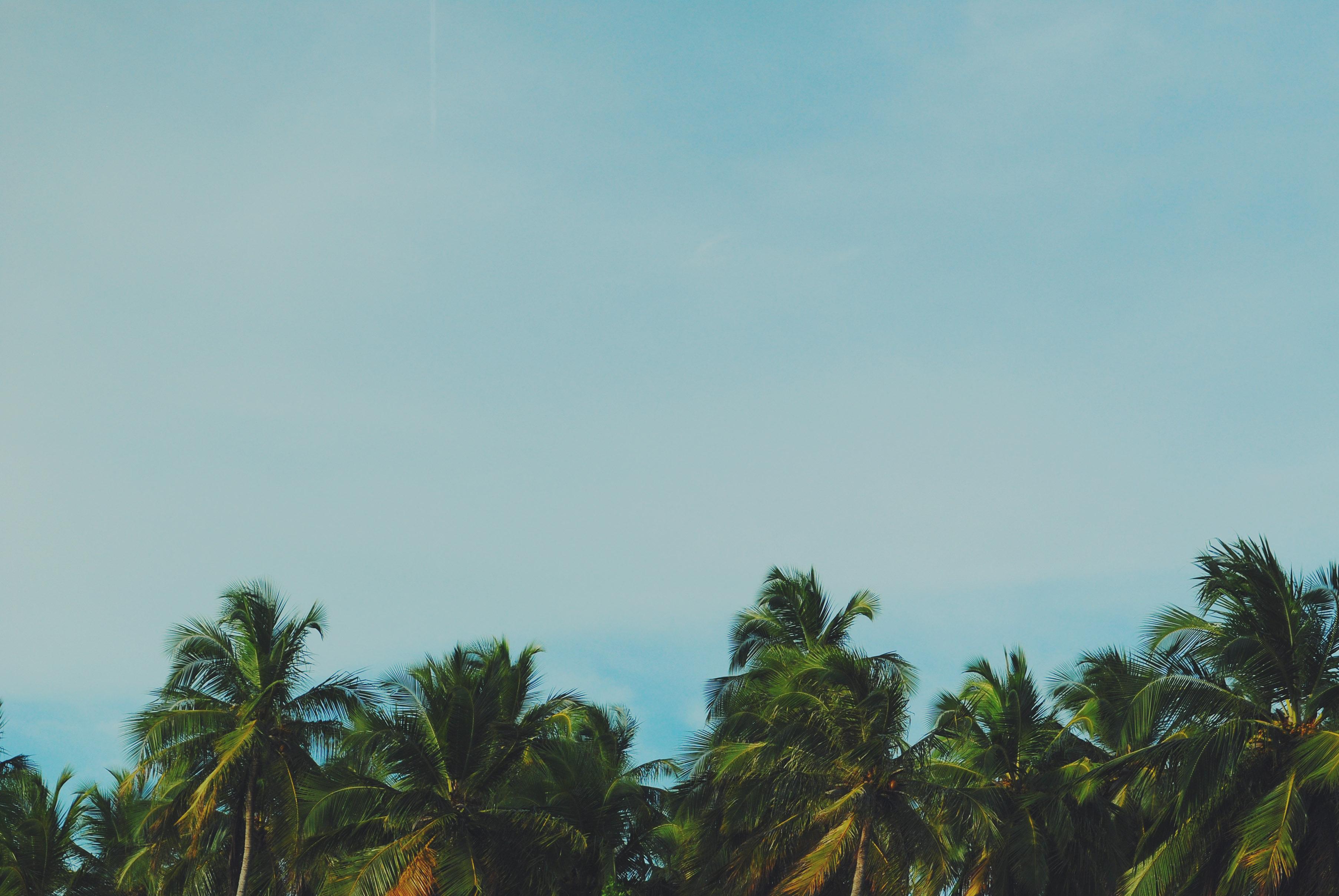 Japaratinga, Alagoas
