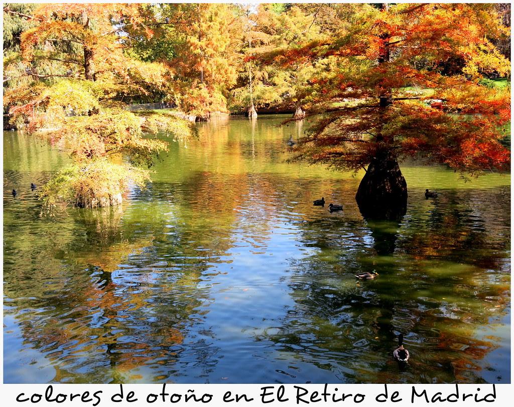 una mañana de otoño el El Retiro