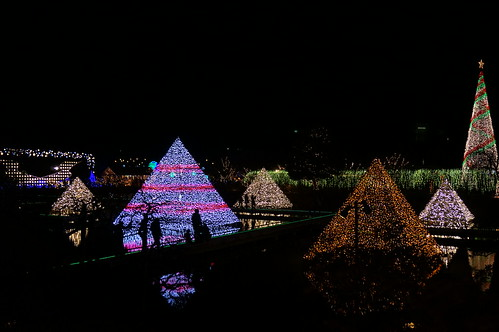 Flower Fantasy 2015 illumination at Ashikaga Flower Park 31