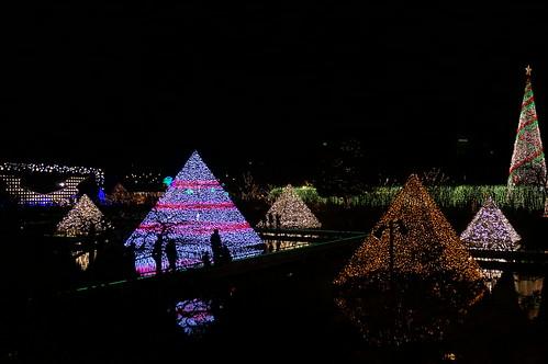 Flower Fantasy 2015 illumination at Ashikaga Flower Park 31