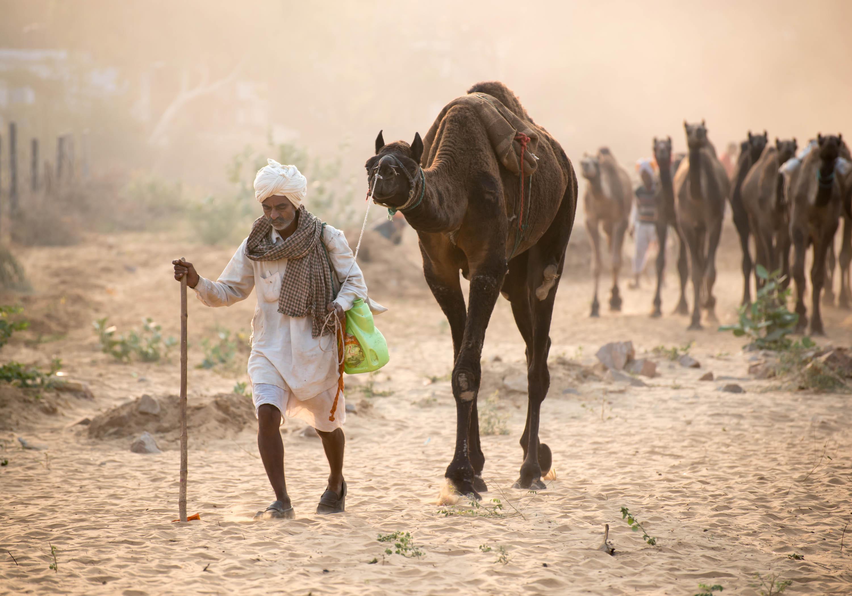 Arriving into Pushkar