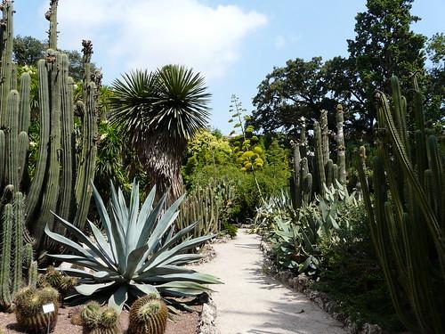 Jardín Botánico, Valencia, Spain
