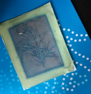 4. Cyanotypes - Making of (4)