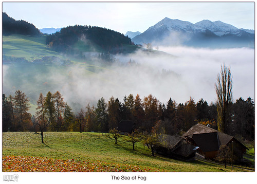 travel autumn sea mist mountains alps nature weather fog clouds forest canon landscape eos schweiz switzerland europe farm lonelyplanet dslr nationalgeographic fantasticnature thebeautyofnature goldiwil
