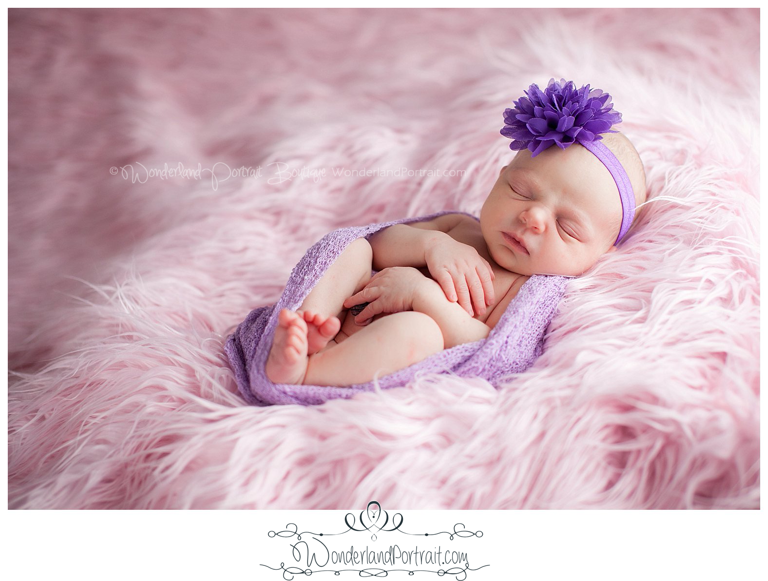 Purple Headband Pink Fur Newborn Photos Bucks County PA | WonderlandPortrait.com