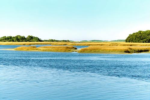 water river florida jacksonville inlet marsh clearsky
