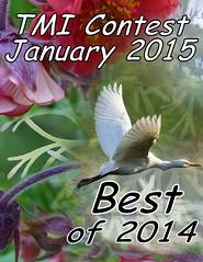 TMI Jan 2015